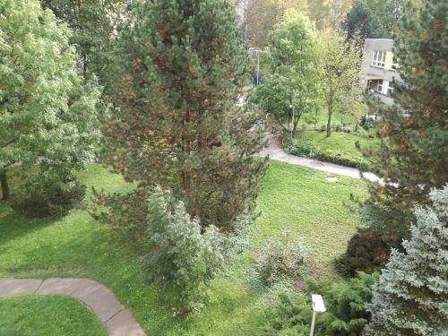 Pronájem bytu 1+1 39 m2, ul. Šeříkova 615/27, Ostrava - Výškovice