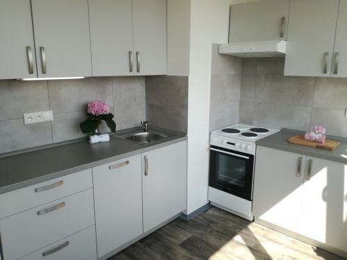 Pronájem bytu 1+1 36 m2, ul. Dr. Martínka 1157/53, Ostrava - Hrabůvka