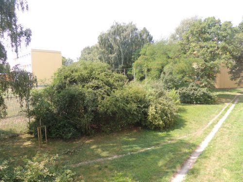 Pronájem bytu 1+1 36 m2, ul. Volgogradská 2503/29, Ostrava - Zábřeh