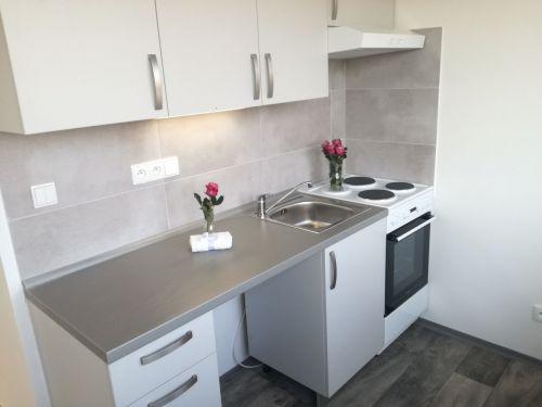 Pronájem bytu 1+1 31 m2, ul. 29. dubna 252/19, Ostrava - Výškovice