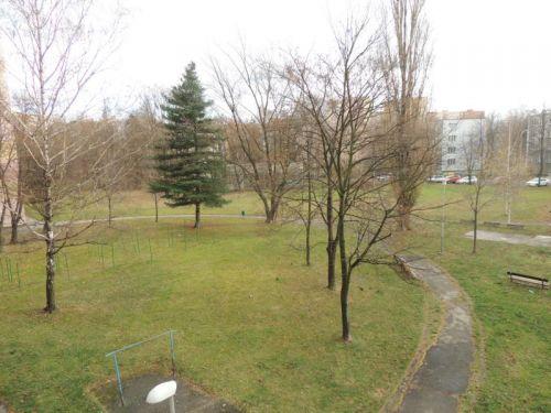 Pronájem bytu 1+1 37 m2, ul. Josefa Kotase 1172/31, Ostrava - Hrabůvka