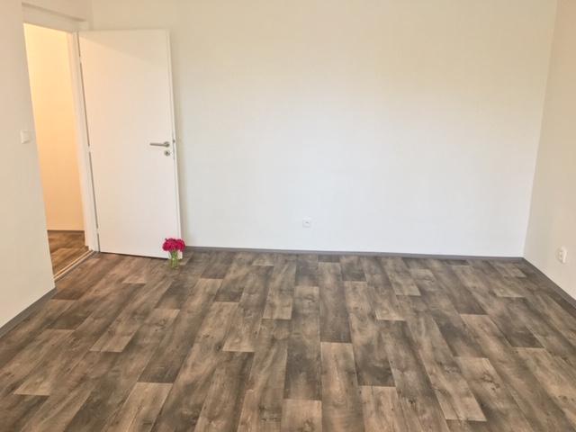 Pronájem bytu 1+1 38 m2, ul. U Haldy 1540/56, Ostrava - Hrabůvka