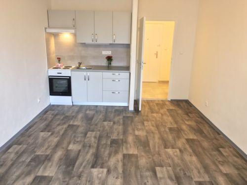 Pronájem bytu 1+kk 28 m2, ul. Lumírova 490/9, Ostrava - Výškovice