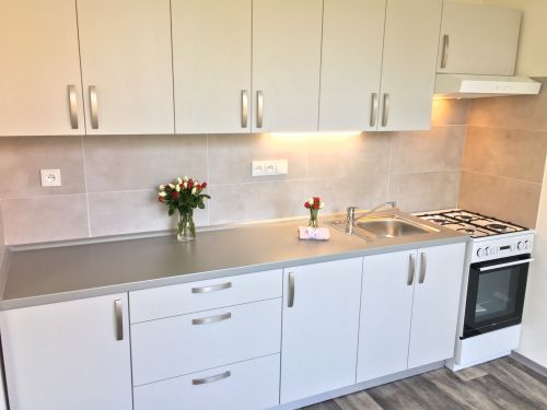 Pronájem bytu 3+1 63 m2, ul. Jana Škody 185/8, Ostrava - Dubina