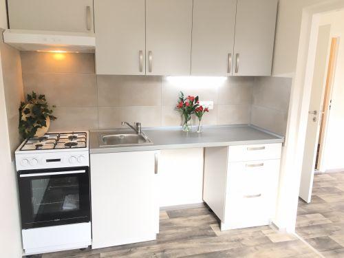 Pronájem bytu 2+1 44 m2, ul. Jana Maluchy 207/59, Ostrava - Dubina